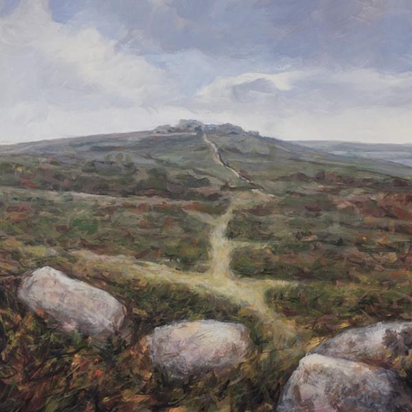 Hound Tor Dartmoor