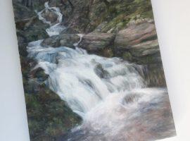 Nant Dolfolau - July, Elan Valley